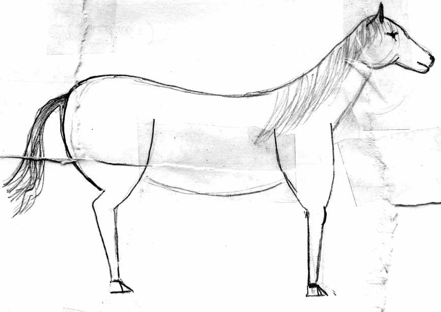 https://alamor.kvintone.ru/joker/horse/horse3.jpg