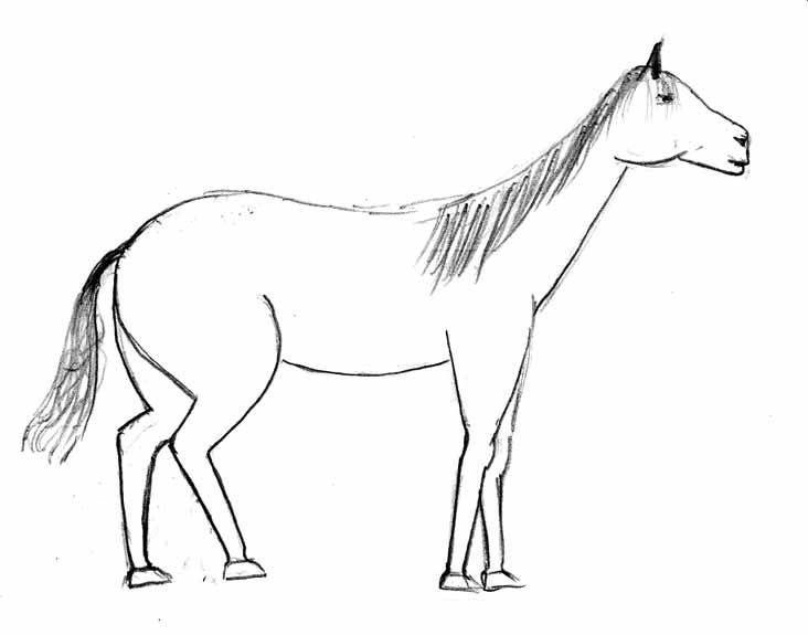 https://alamor.kvintone.ru/joker/horse/horse4.jpg